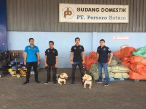 K9 BNNP Kepri melakukan Pendeteksian di Kargo bandara Hang Nadim